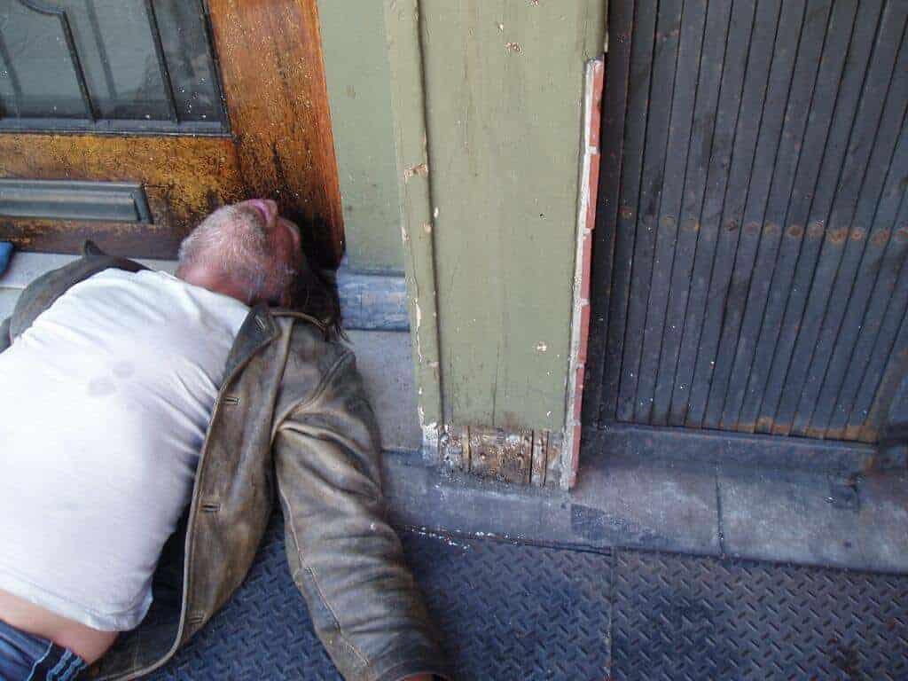 SF Gentleman Snooze